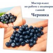 Blackberry_lesson.jpg